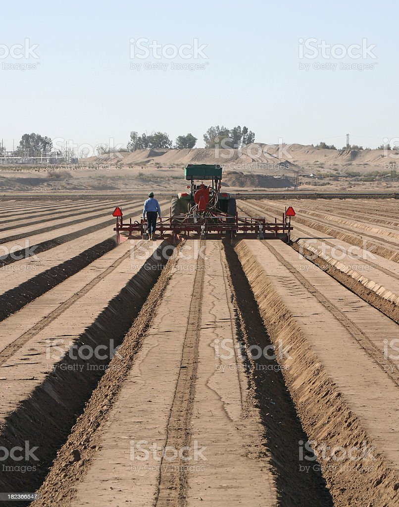 Plowing Furrows For Planting royalty-free stock photo
