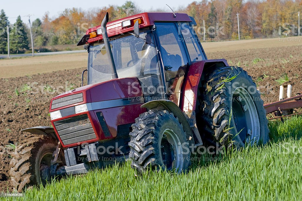 Plowing second round wheat shoots during Autumn in NYC. royalty-free stock photo