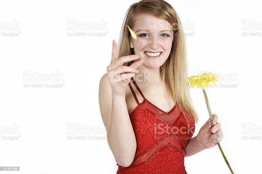 Plucking a Daisy stock photo