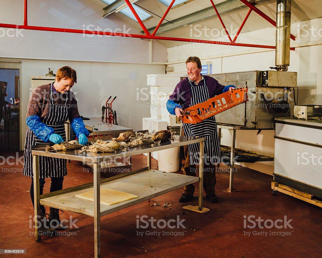 Plucking Pheasants at Smokehouse stock photo