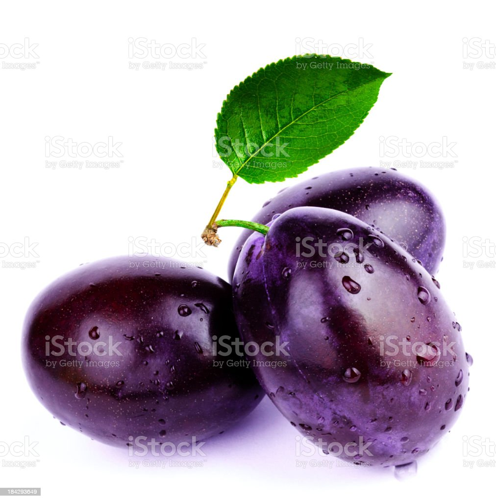 Plum and leaf stock photo