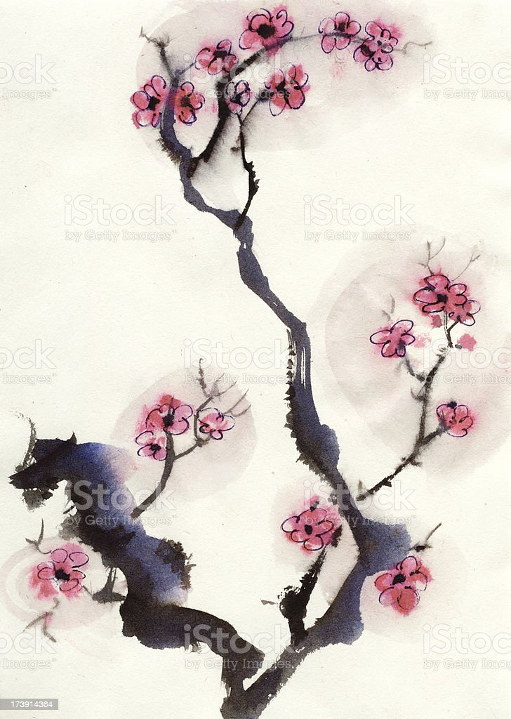 Plum blossom stock photo