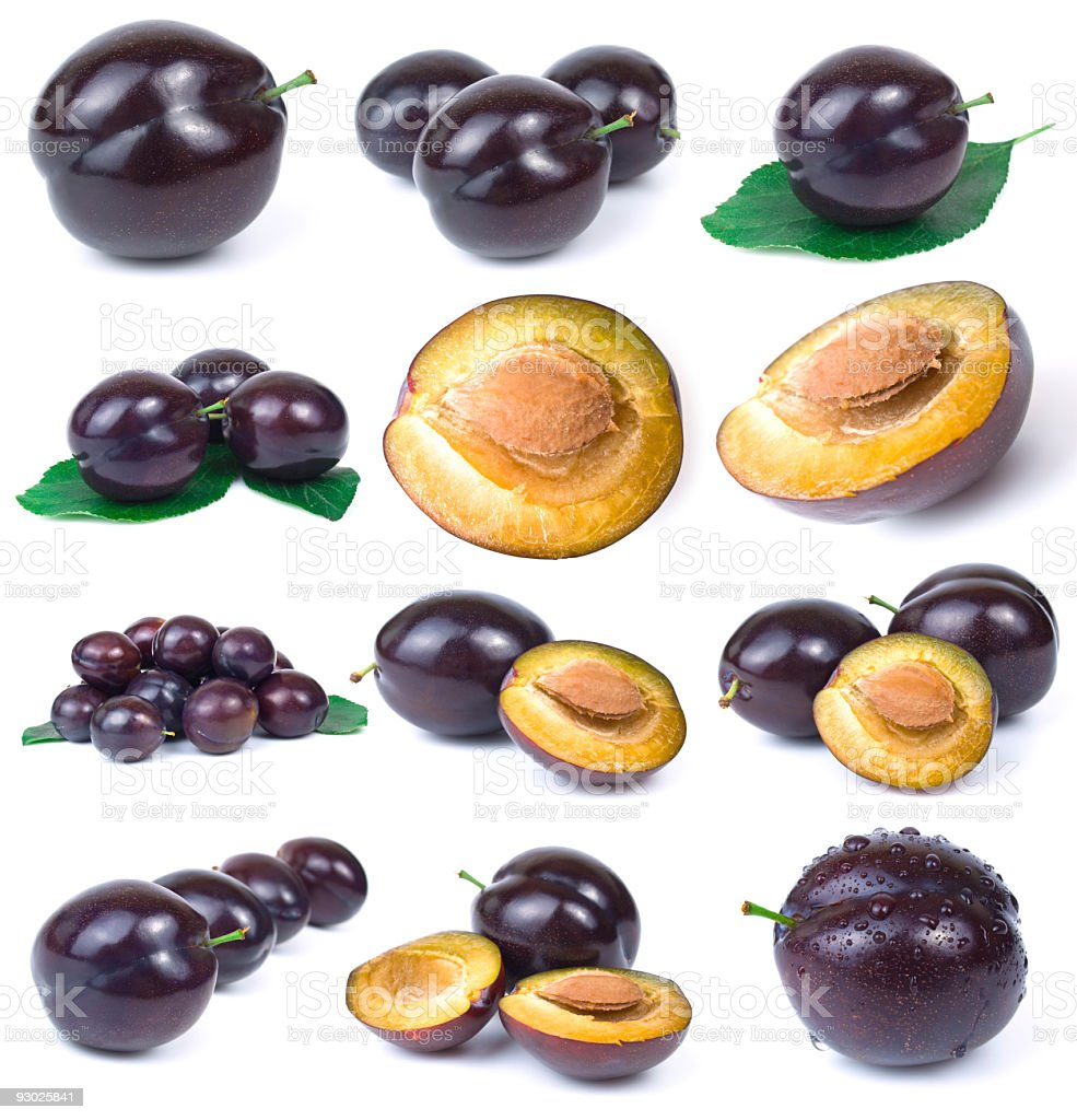 plum collection royalty-free stock photo