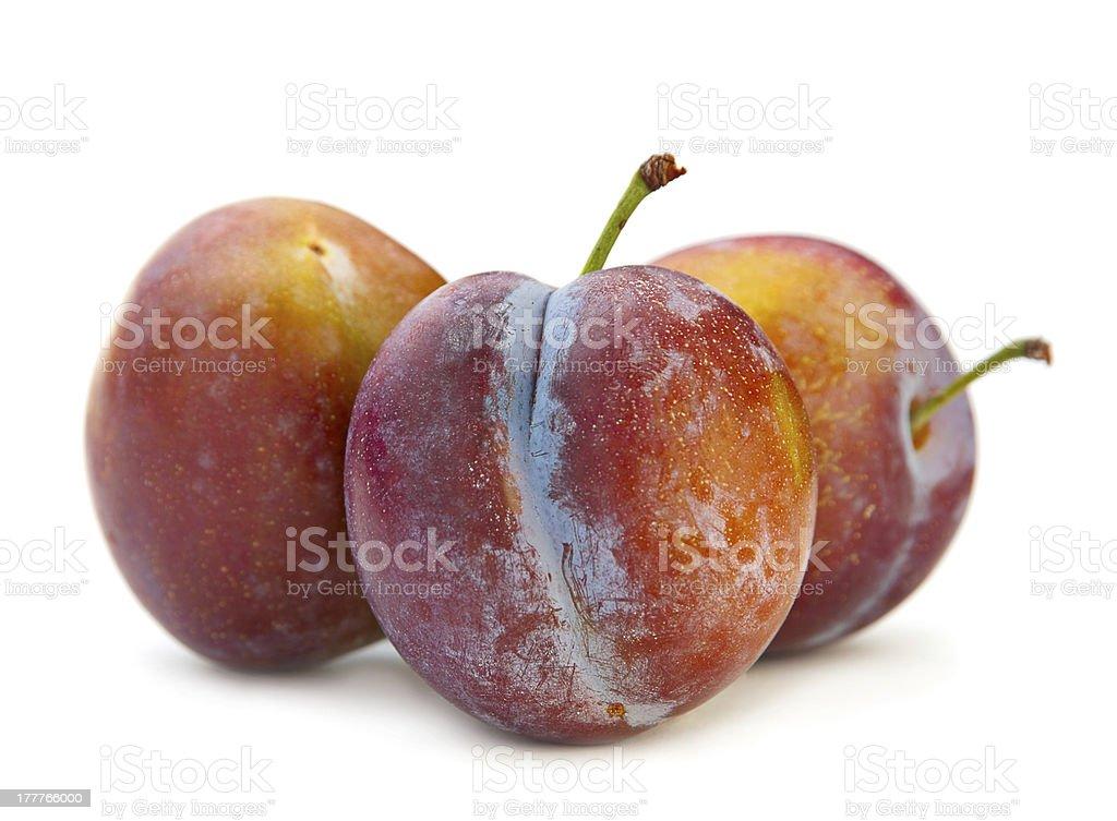Plum fruit royalty-free stock photo