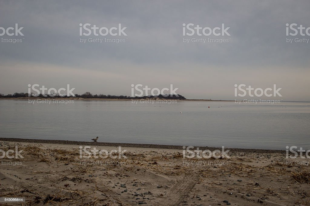 Plum Island in Winter stock photo