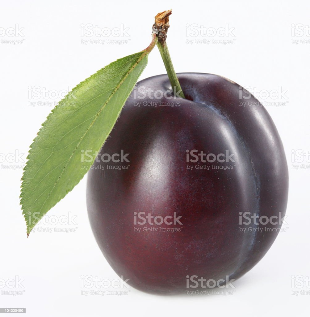 Plum royalty-free stock photo