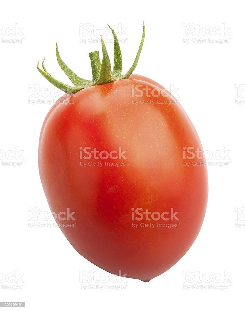 plum tomato stock photo