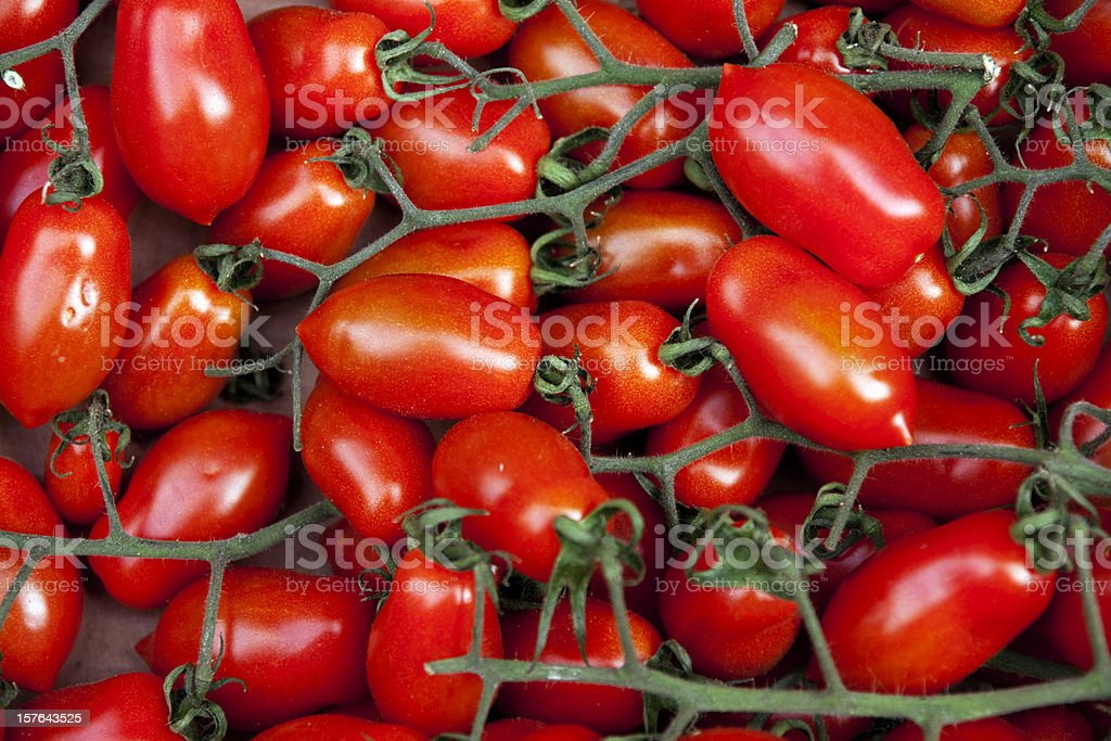 Plum tomatoes on the vine stock photo
