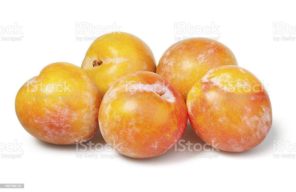 plum yellow group royalty-free stock photo
