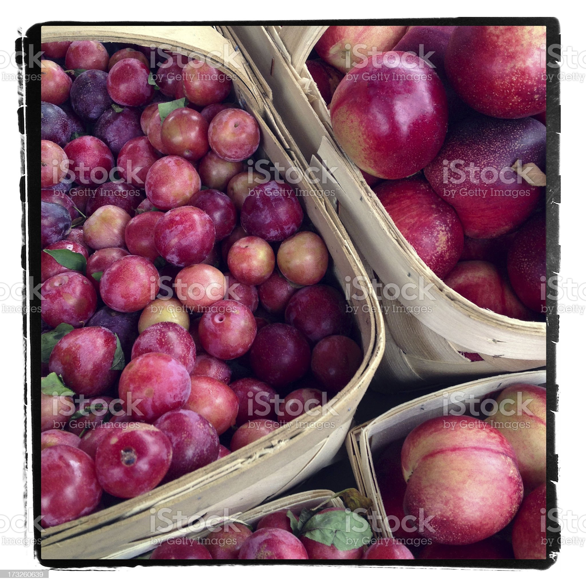 Plums and Nectarines royalty-free stock photo