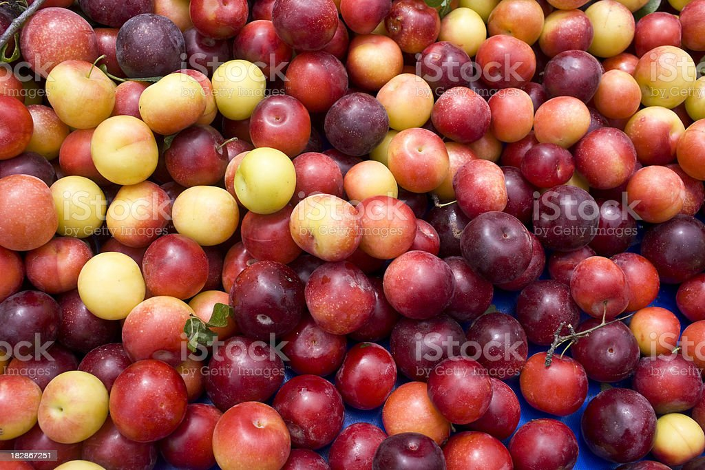 Plums at the Market royalty-free stock photo
