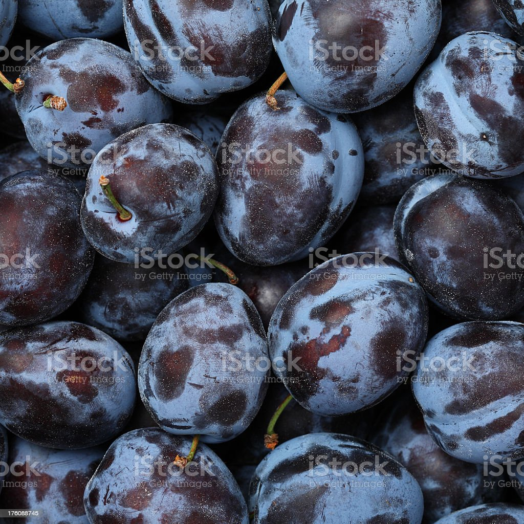 Plums Background royalty-free stock photo