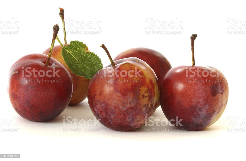 Plums on white background stock photo