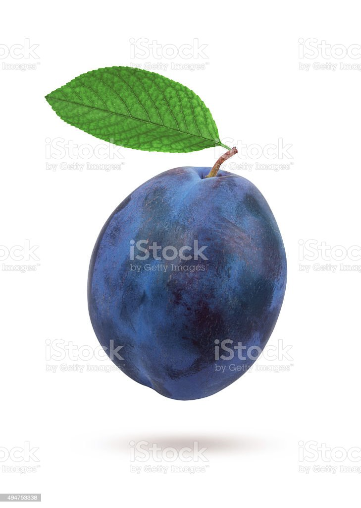 Plums with leaf stock photo