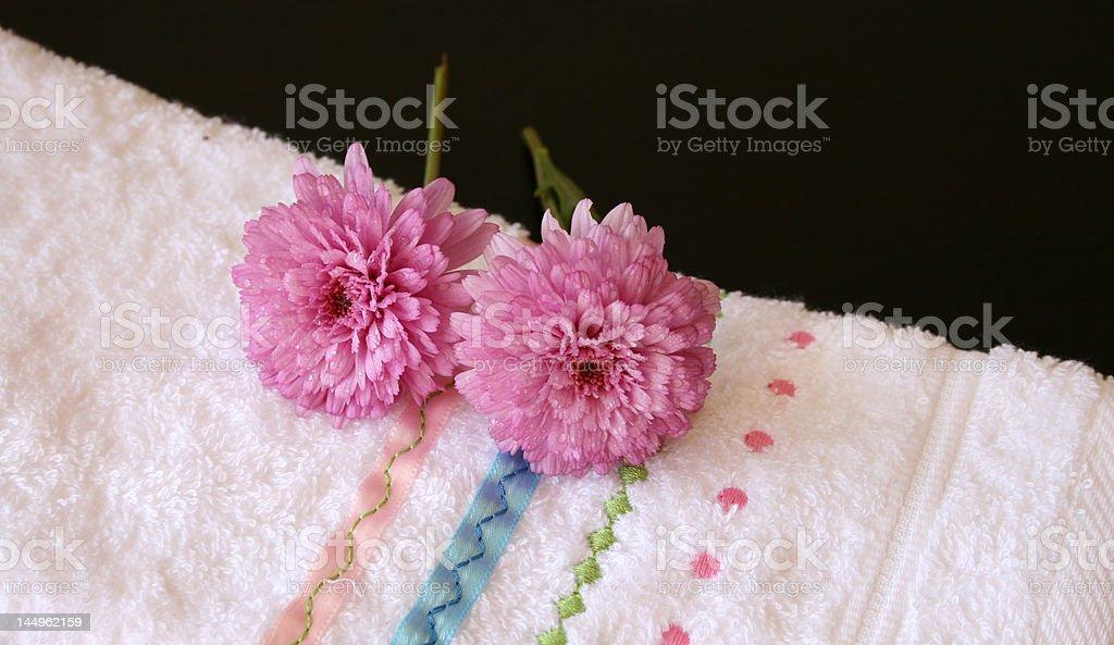 Plush Pink royalty-free stock photo
