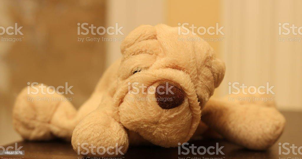 Plush puppy stock photo