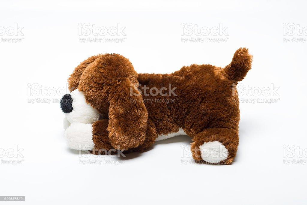 plush toy dog stock photo