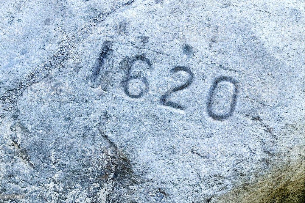Plymouth Rock Closeup stock photo