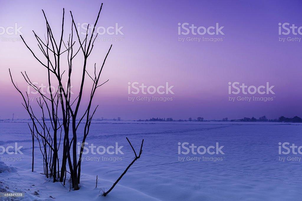 Po Valley stock photo
