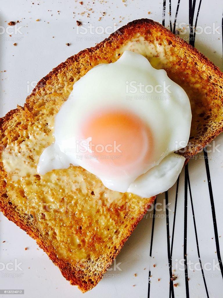 Poached egg on toast stock photo