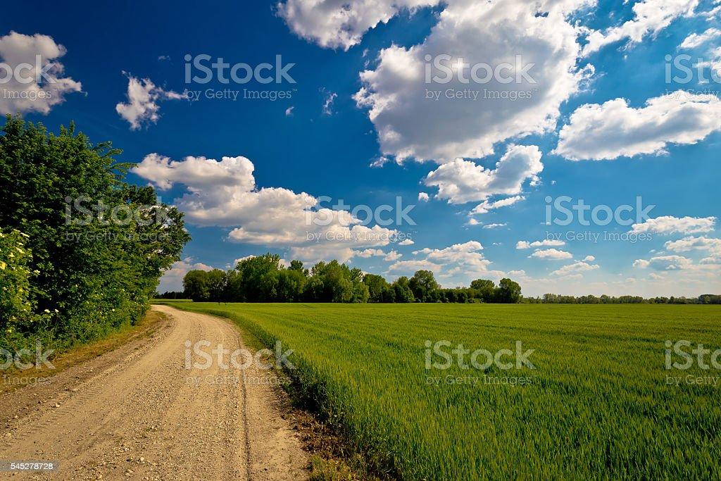Podravina region field and road stock photo