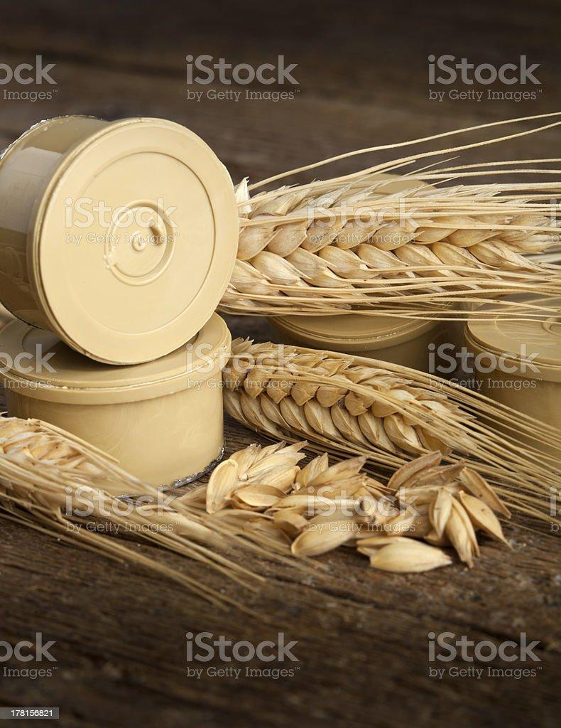 Pods of barley royalty-free stock photo