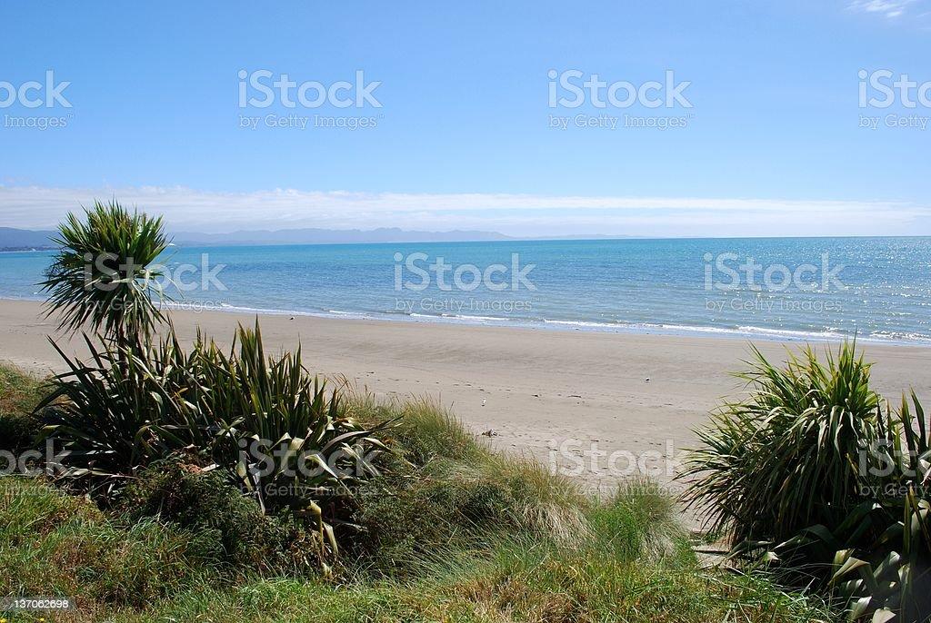 Pohara Beach, Golden Bay, New Zealand stock photo