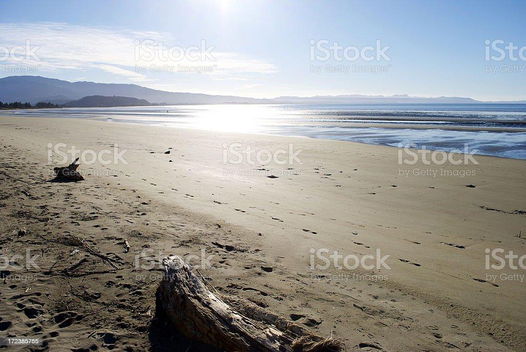 Pohara Beach, Golden Bay, New Zealand royalty-free stock photo
