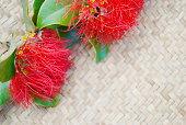 Pohutakawa & Kete, New Zealand Summer or Christmas