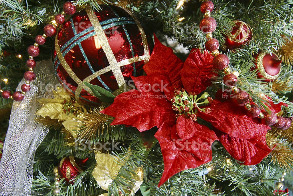 Poinsetta on Christmas tree royalty-free stock photo