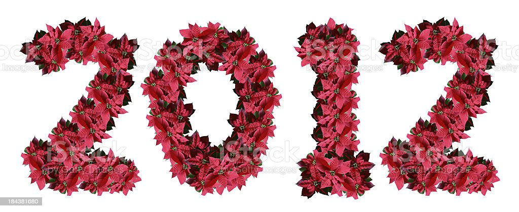 Poinsettia 2012 royalty-free stock photo