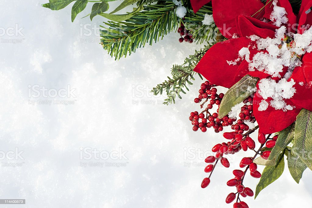 Poinsettia and berry christmas wreath against snow background royalty-free stock photo