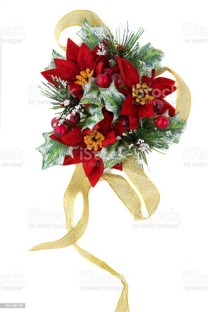Poinsettia Christmas decoration with gold ribbon royalty-free stock photo