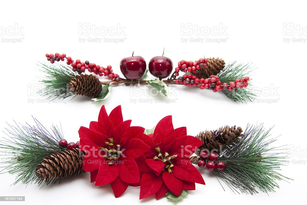 Poinsettia with decoration royalty-free stock photo
