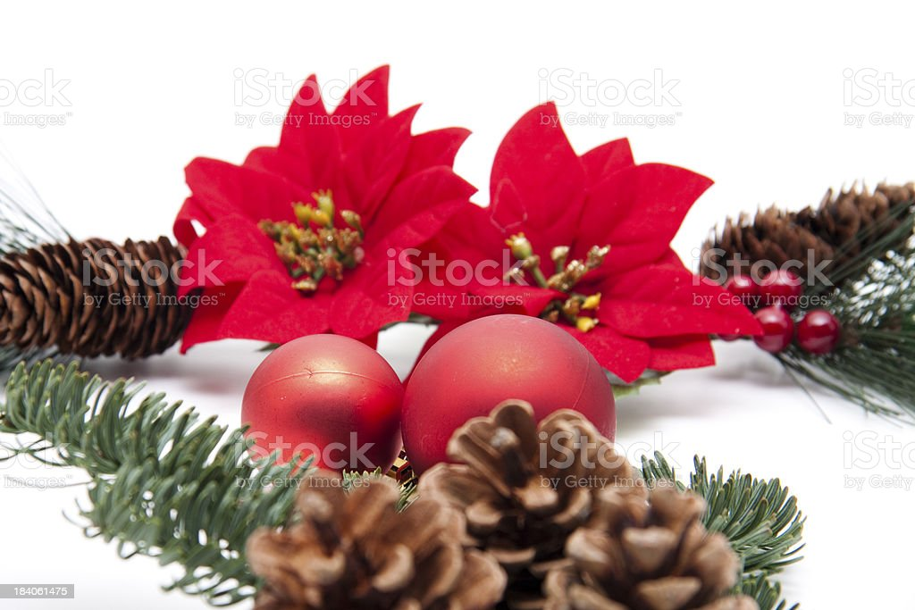 Poinsettia with sphere royalty-free stock photo