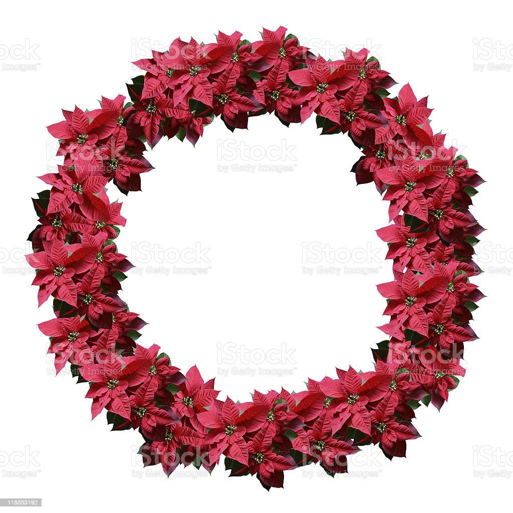 Poinsettia wreath royalty-free stock photo