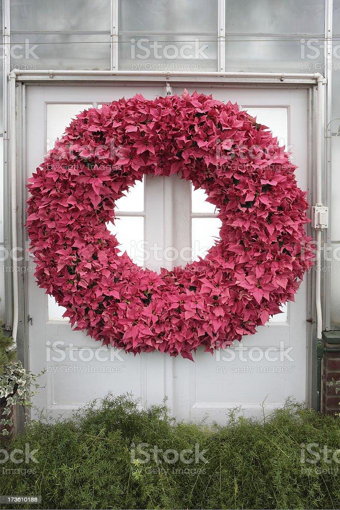 Poinsettia wreath stock photo