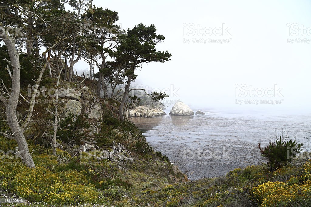 Point Lobos State Reserve stock photo