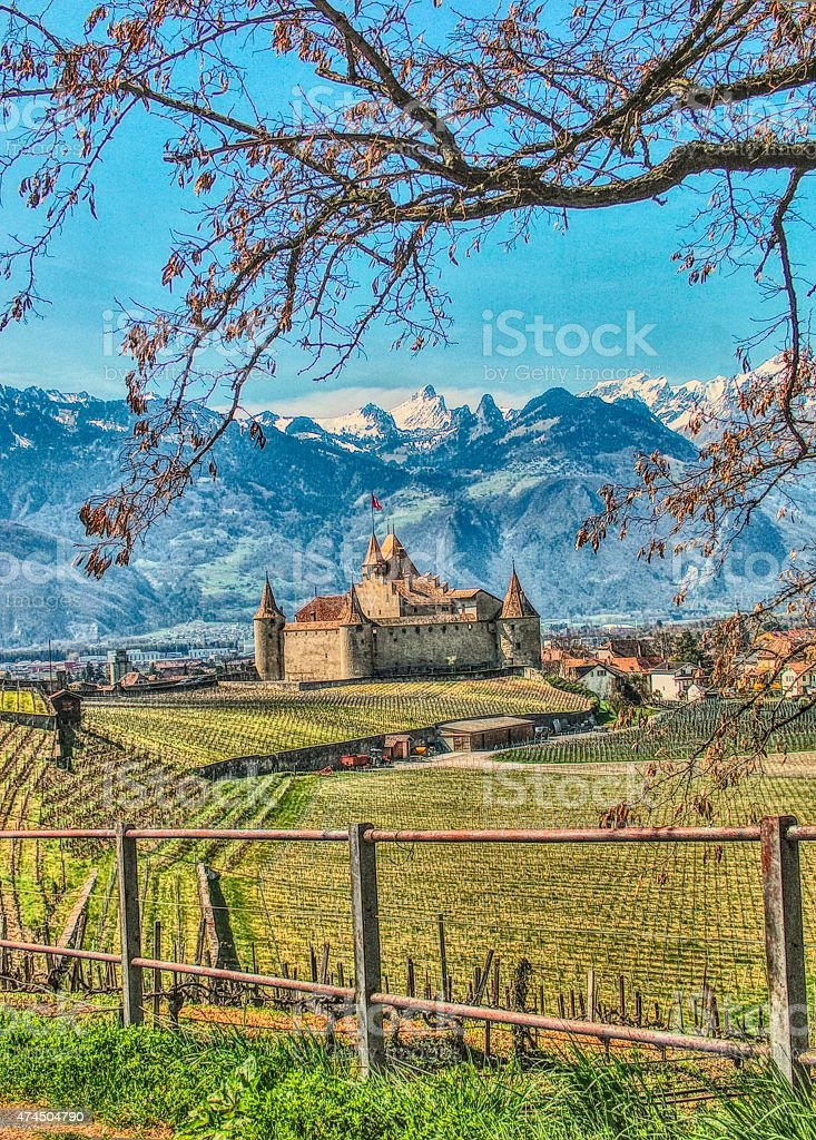 Point of view Castle of Aigle in Switzerland and Swiss Alps. stock photo