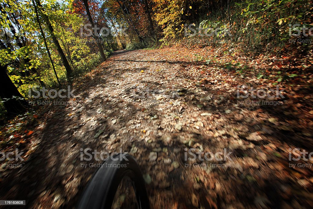 Point Of View Mountain Bike Front Wheel Speeding on Cyclepath royalty-free stock photo