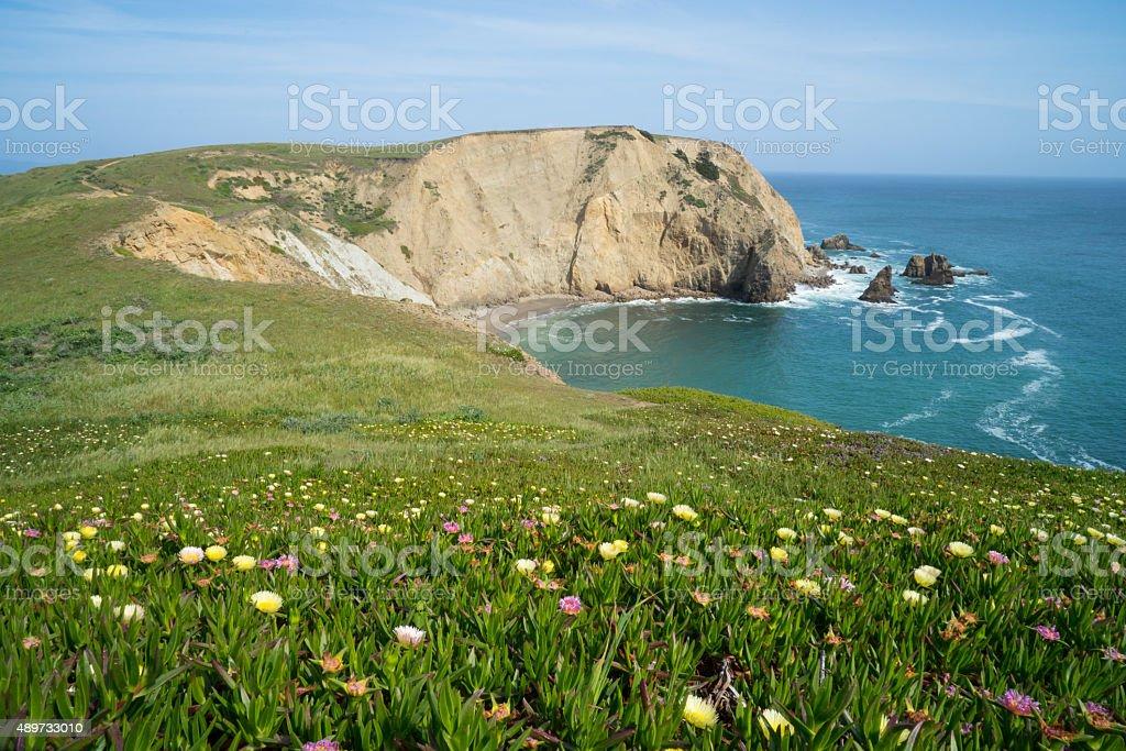 Point Reyes National seashore in California stock photo