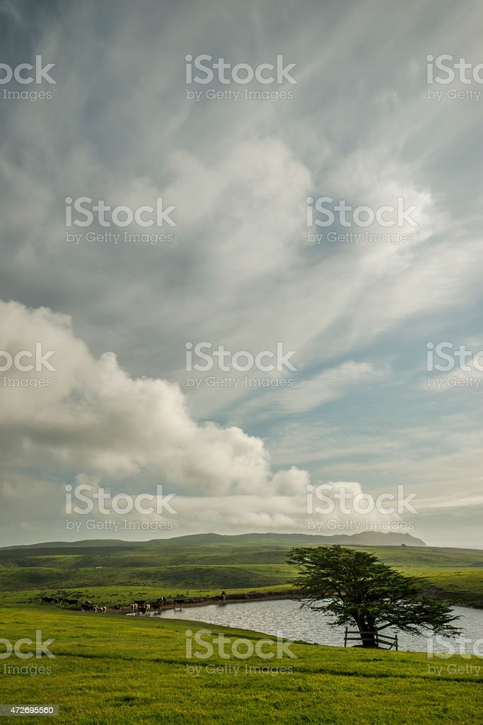 Point Reyes National Seashore in Northern California stock photo