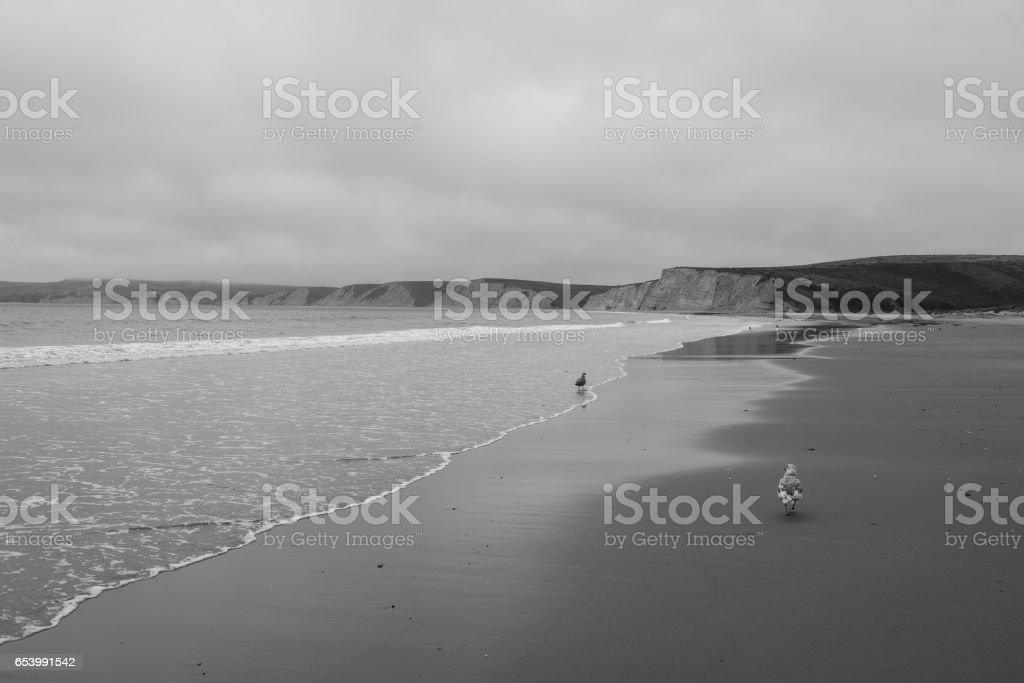Point Reyes National Seashore stock photo