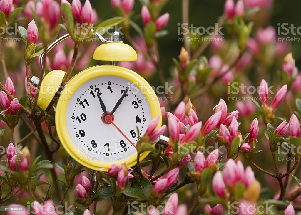 Point two clock royalty-free stock photo