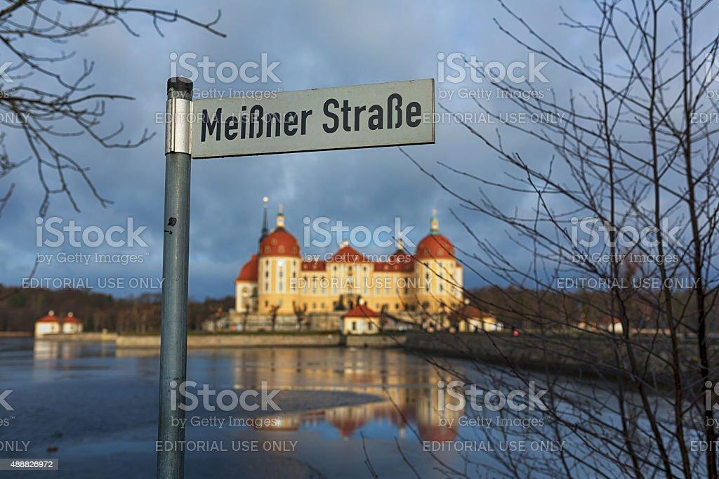 Pointer against the backdrop of the castle Moritzburg stock photo