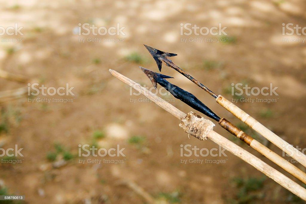 Poisoned arrows stock photo