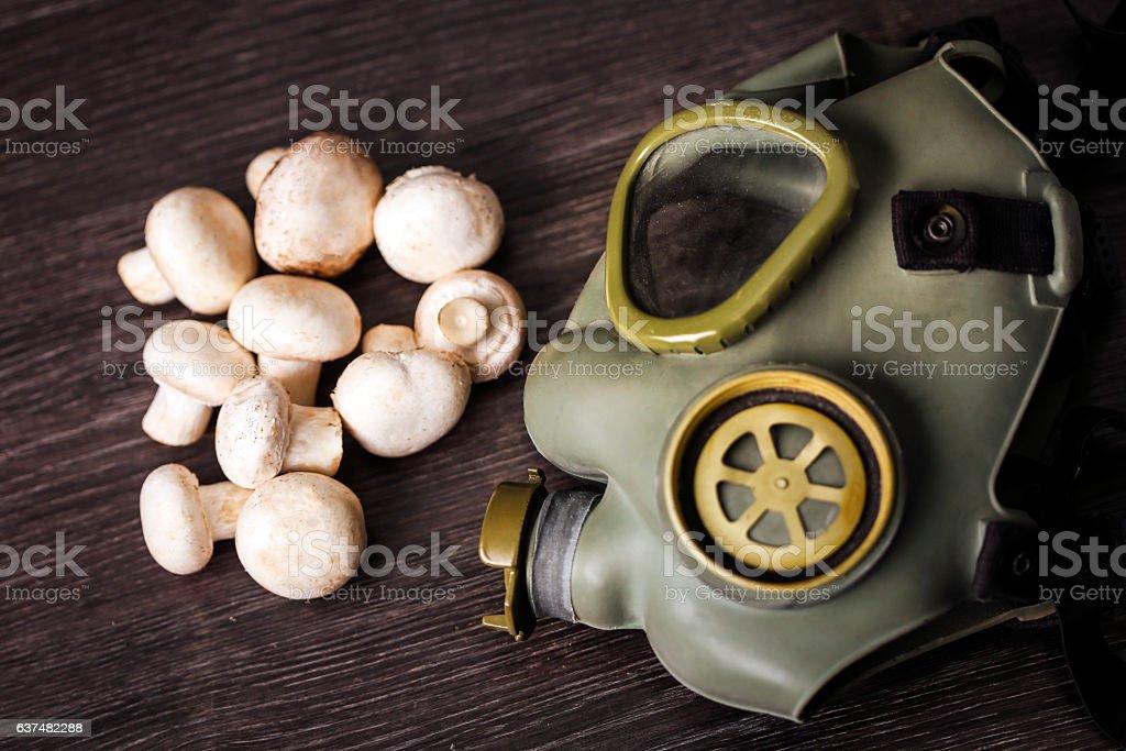 Poisonous mushrooms stock photo