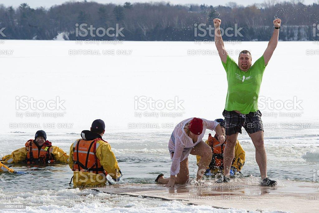 Polar Bear Dip royalty-free stock photo