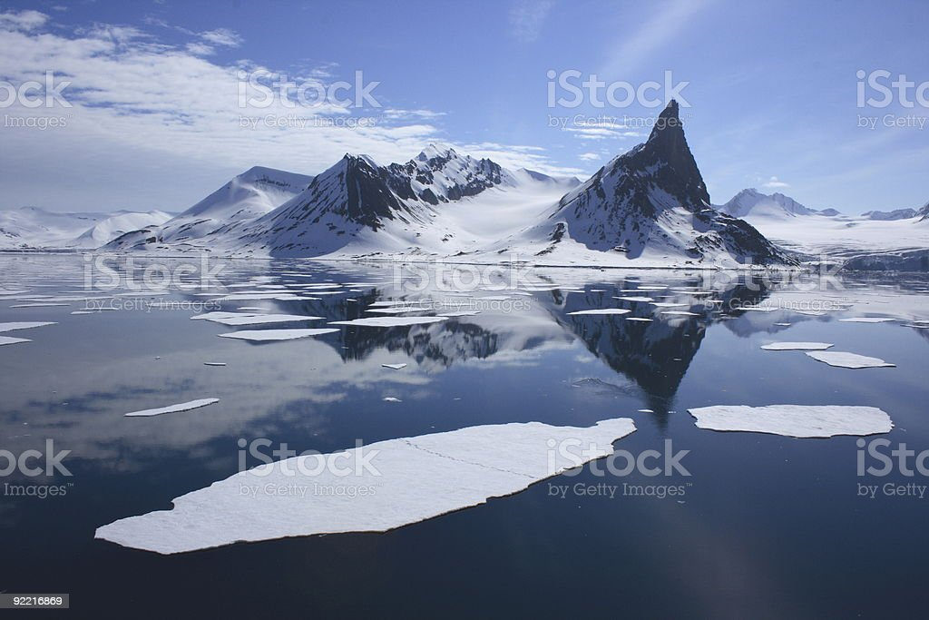 Polar Bear Footprints in the Arctic Ice royalty-free stock photo