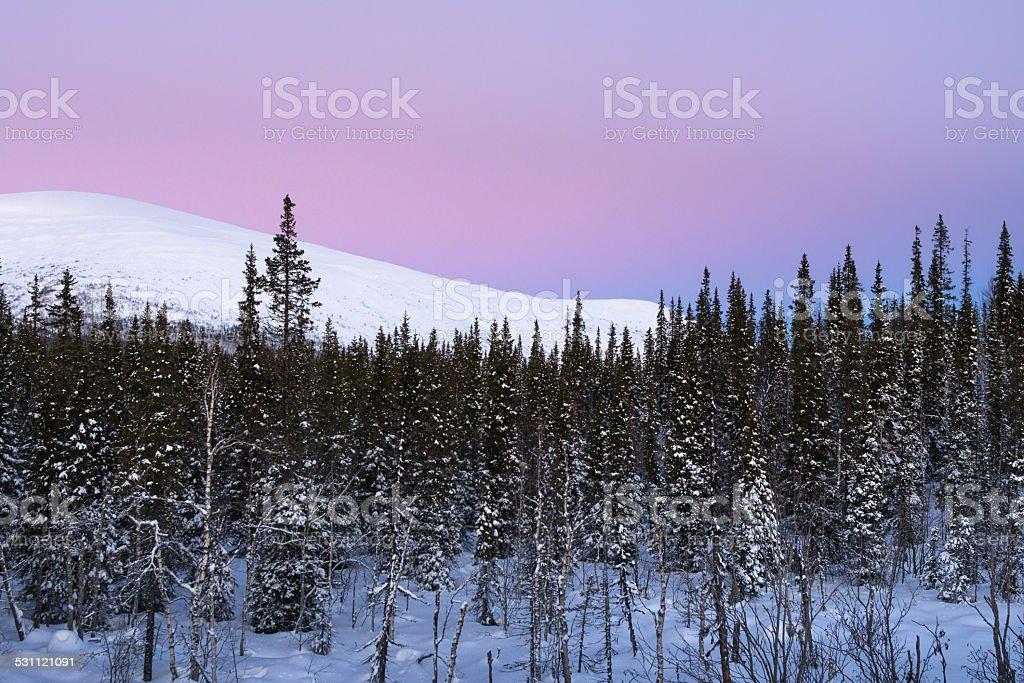 Polar light stock photo